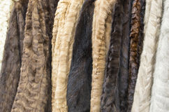 Women's fur coats. On display of different colors aligned forming a background royalty free stock photo