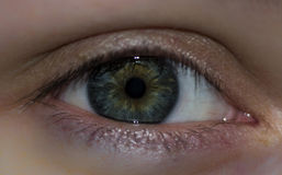 Women's gray eyes Stock Photography