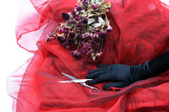 A women's hand. Symbolic photo - a women's hand would like to cut the flowers and conclude therefore with the past Royalty Free Stock Photography