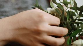 Women`s hand shot closeup gently and carefully inserts the stems and flowers into a finished pot of flowers stock footage