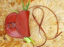 Women's handbag on stump Royalty Free Stock Image