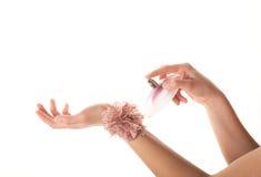 Women's hands Royalty Free Stock Photo