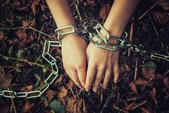 Women`s hands chained in a dark forest - the concept of violence, hostage, slavery.  stock images