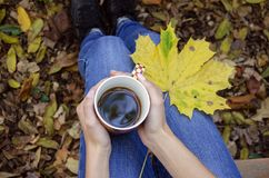 Women`s hands with a cup of hot drink in the afternoon royalty free stock photography
