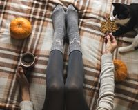 Women`s hands and feet in sweater and woolen cozy gray socks holding cup of hot coffee, sitting on plaid with kitten royalty free stock images
