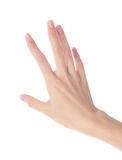 Women's hands on isolated a white background Royalty Free Stock Photo