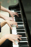 Women's hands on the keyboard of piano. girl plays Stock Image
