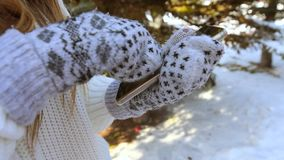 Women`s hands in mittens on the background of snow and Christmas trees, hold a touch phone in their hands and try to press it. The. Women`s hands in warm mittens stock footage