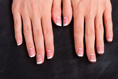 Women's hands with a stylish french manicure. Stock Image