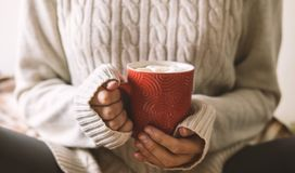 Women`s hands in sweater are holding cup of hot coffee, chocolate or tea. Concept winter comfort, morning drinking, warm. In middle of cold royalty free stock photography