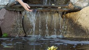 Women`s hands touch the water running down the rocks in an artificial pond. Women`s hands touch transparent water flowing down the stones into a small pond stock footage