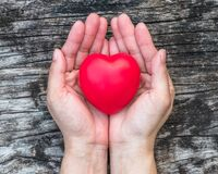 Free Women's Heart Health Care, Medical Concept With Healthy Red Love Heart On Aging Hand Support Royalty Free Stock Photo - 200053315