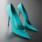 Women's heels blue Stock Photography