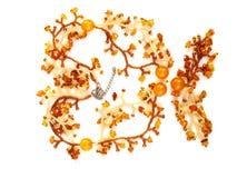 Women's Jewellery Royalty Free Stock Image