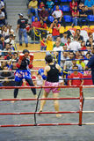 Women's Kick Boxing Action Stock Photo