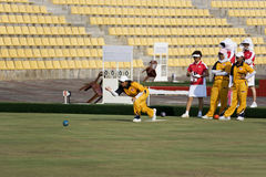 Women's Lawn Bowl Action Royalty Free Stock Photo
