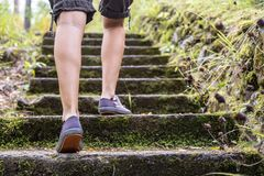 Free Women`s Legs In Comfortable Sneakers, Going Up The Old Stone Steps. Concept Of An Active Lifestyle. Stock Photos - 165341243