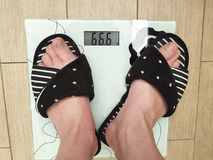Women`s legs scales royalty free stock image