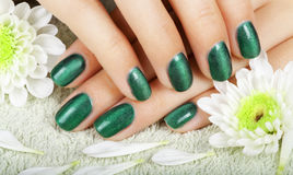 Women's manicure with effect of cat's-eye gel polish. Royalty Free Stock Photography