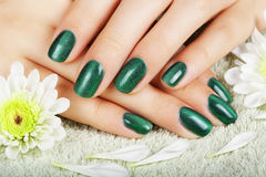 Women's manicure with effect of cat's-eye gel polish. Royalty Free Stock Photo