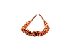Women's necklace. Beautiful female necklace of brown stones for an elegant lady Stock Image