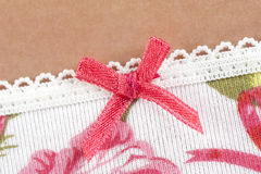 Women's panties detail with pink bow Stock Images