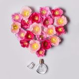 Women`s perfume bottle and pink mallow flowers. Minimalism beauty concept.  Stock Photo