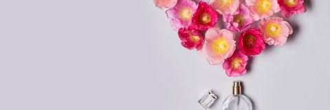 Women`s perfume bottle and pink mallow flowers. Minimalism beauty concept.  Royalty Free Stock Photos