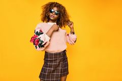 Women's Pink Sweatshirt and Brown Plaid Skirt Royalty Free Stock Photography