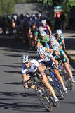 Women's Pro Cycling Crit Chase Group Stock Photo