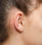Women's right ear. The auricle. Kind of close up Stock Image