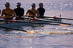 Women's Rowing Team Splashes Stock Photos