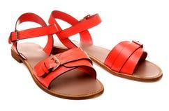 Women's sandals Stock Image