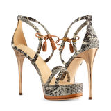 Women's shoes. Of snakeskin high heels Royalty Free Stock Images