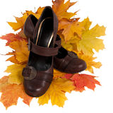 Women's shoes on colorful autumn leaves Stock Photo