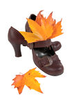 Women's shoes and colorful autumn leaves Stock Photos