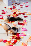 Women's shoes on the floor. Strewn with rose petals Royalty Free Stock Images