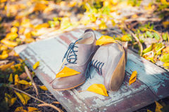 Women's shoes lie on a wooden board near the yellow leaves Stock Photos