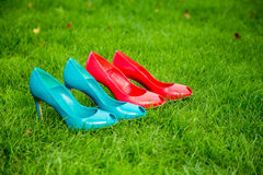 Women's shoes in a row standing position on the grass. A Stock Photo