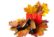 Women`s shoes and shopping bag on colorful autumn leaves  Stock Photo