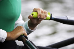 Women's Single Sculls stock photography