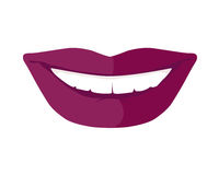 Women s Smile with Shining White Teeth Vector Royalty Free Stock Image