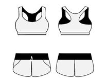 Women's sport underwear. Bra and shorts. Stock Image