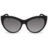 Women`s sunglasses. Black glasses on a white background Royalty Free Stock Photography