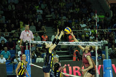 Women's Volleyball match stock photo