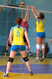 Women's volleyball match Stock Images