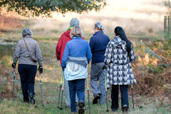 Women's walking group on hike through park. stock image