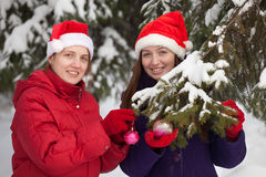 Women in Santa hats decorates  fir-tree Stock Image