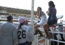 Women sat on a fence, Calgary Stampede Stock Images