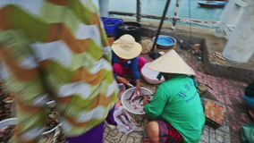 Women Scale Fish at Shell-fish in Bowls on Stones in Vietnam stock video